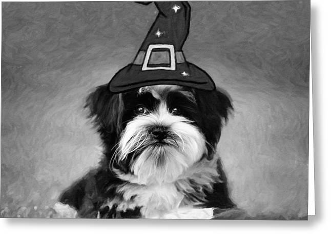Greeting Card featuring the photograph Mr. Wizard by Sue Collura