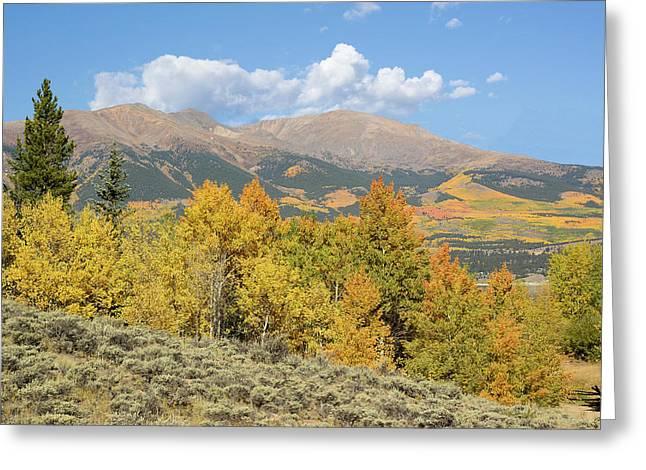 Mt. Elbert Autumn Greeting Card by Aaron Spong