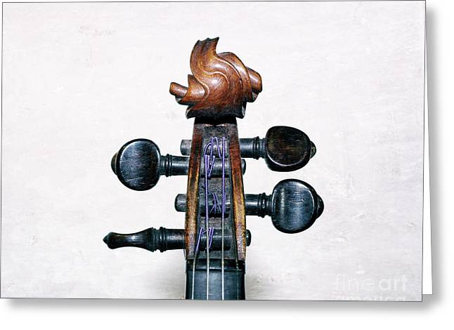 Musical Toupee Greeting Card by Steven Digman