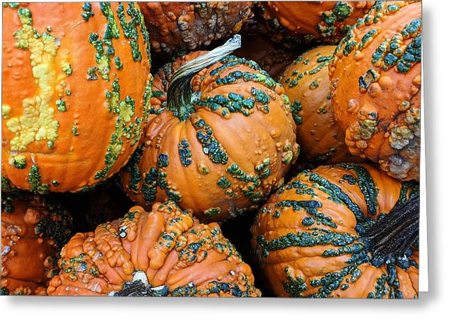 Greeting Card featuring the photograph Nestled - Autumn Pumpkins by Debi Dalio