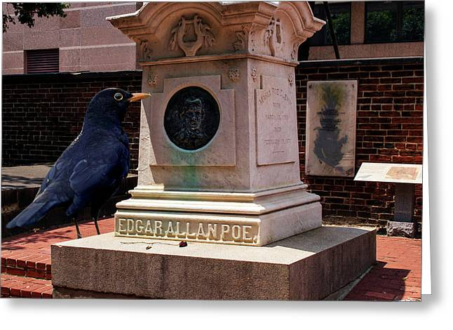 Greeting Card featuring the photograph Nevermore Quoth The Raven by Bill Swartwout Fine Art Photography