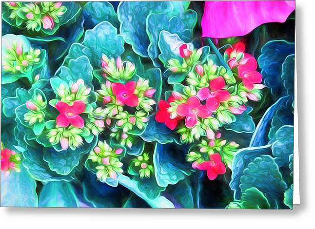 New Blooms Greeting Card