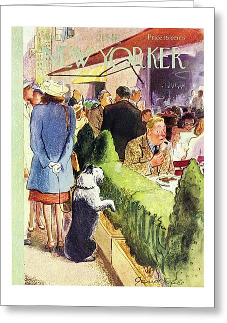 New Yorker August 17 1946 Greeting Card