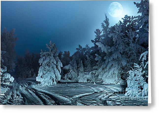 Nightly Landscape With Fir Forest Snow Greeting Card
