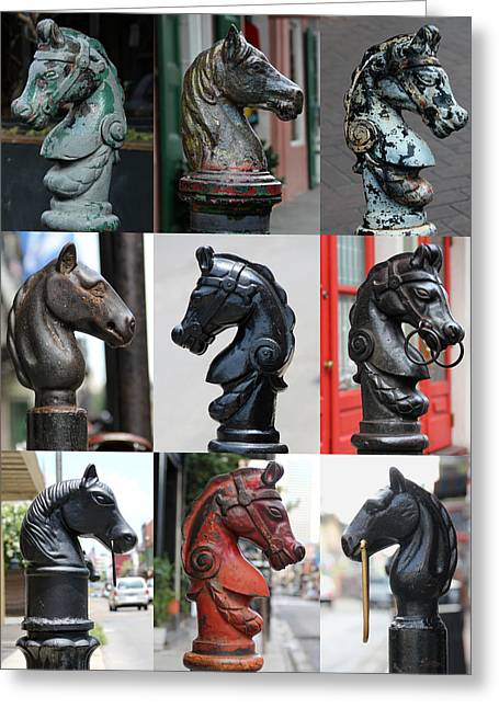 Nine Horse Head Hitching Posts Greeting Card