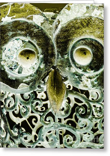 Nocturnal Night Owl Greeting Card