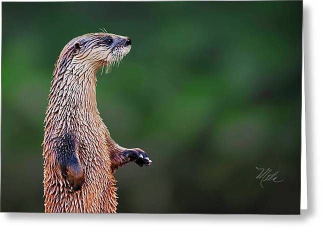 Norman The Otter Greeting Card