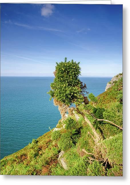 North Devon Coast Greeting Card