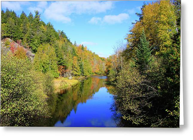 Northwoods Reflection Greeting Card
