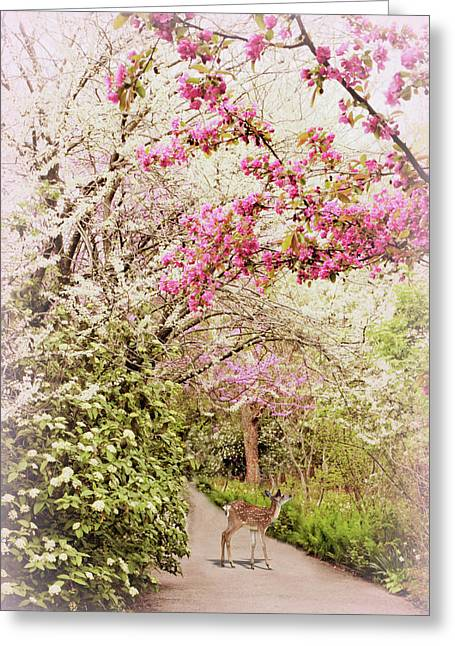 A Spring Visitor Greeting Card