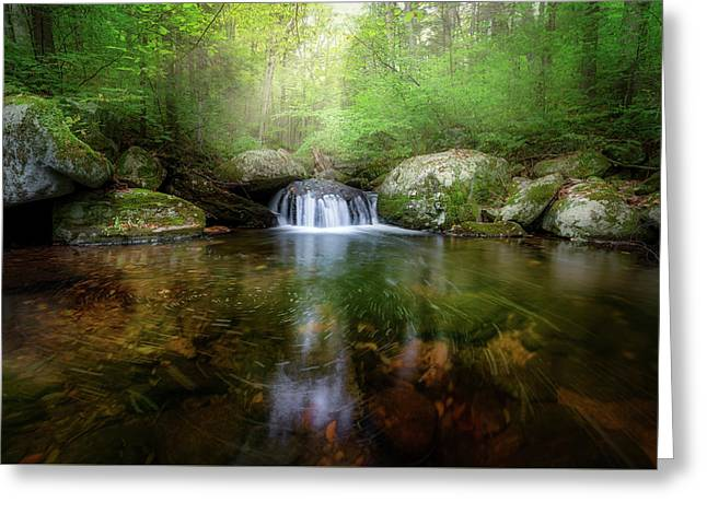 Greeting Card featuring the photograph Oasis by Bill Wakeley