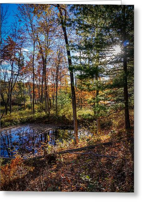 October Late Afternoon Greeting Card