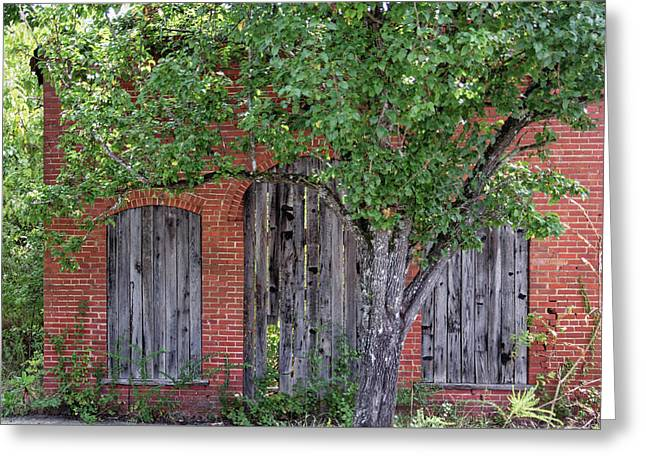 Greeting Card featuring the photograph Old Brick Building Behind Tree by Randy Bayne