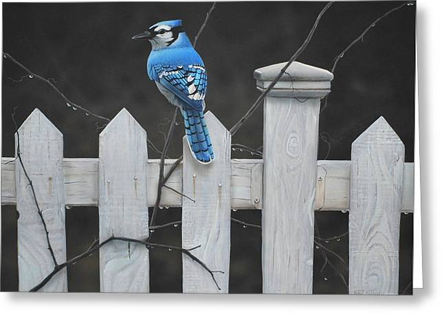 Old Picket Fence Greeting Card