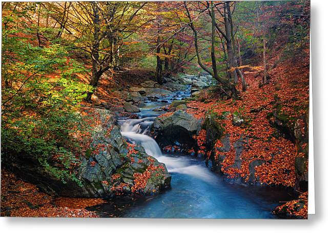 Old River Greeting Card