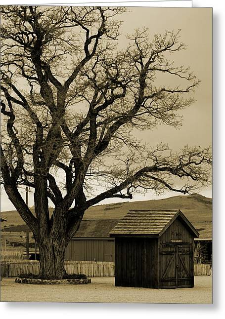 Old Shanty In Sepia Greeting Card