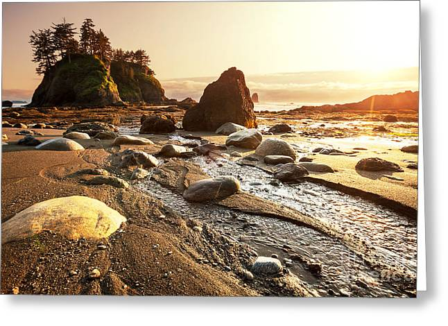 Olympic National Park Landscapes Greeting Card