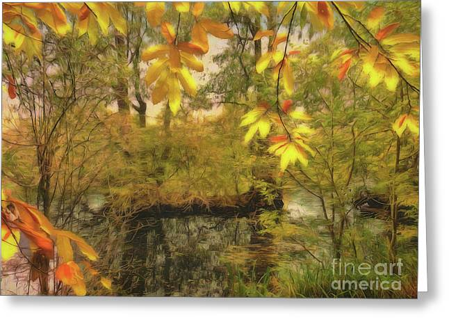 Once A Pond A Time Greeting Card