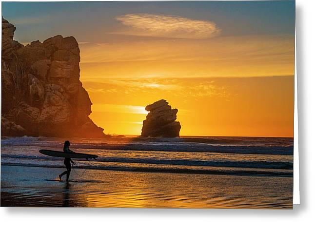 One Last Wave Greeting Card by Fernando Margolles