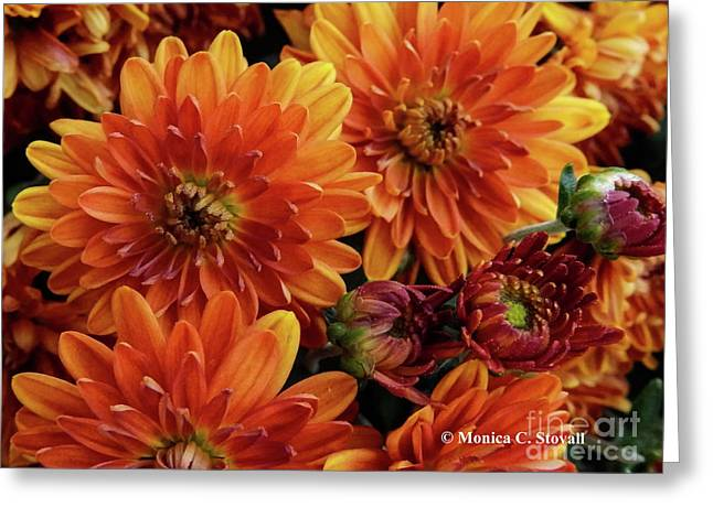 Orange Flowers No. 14 Greeting Card