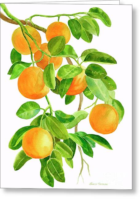 Oranges On A Branch Greeting Card
