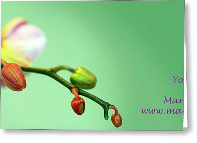 Orchid Yoga Mat Greeting Card