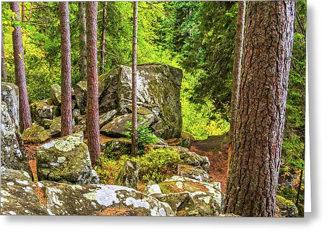 Ossian's Seat, The Hermitage, Perthshire Greeting Card by David Ross