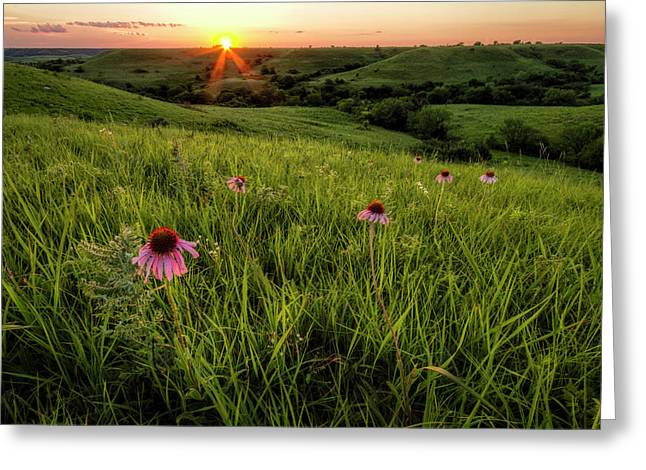 Out In The Flint Hills Greeting Card