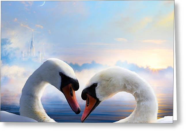 Pair Of Swans In Love Floating On The Greeting Card