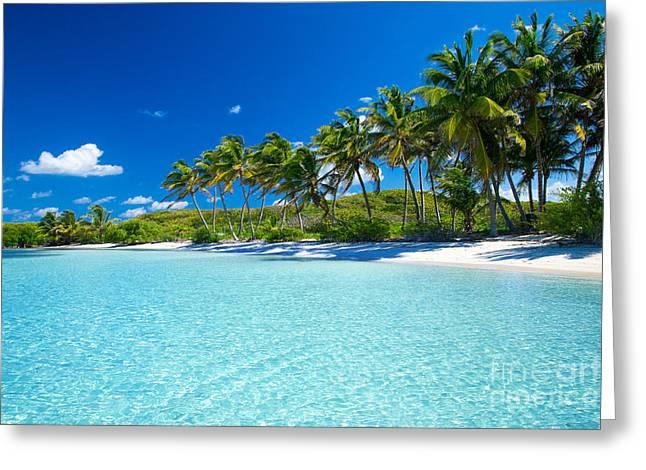 Palm And Tropical Beach Greeting Card