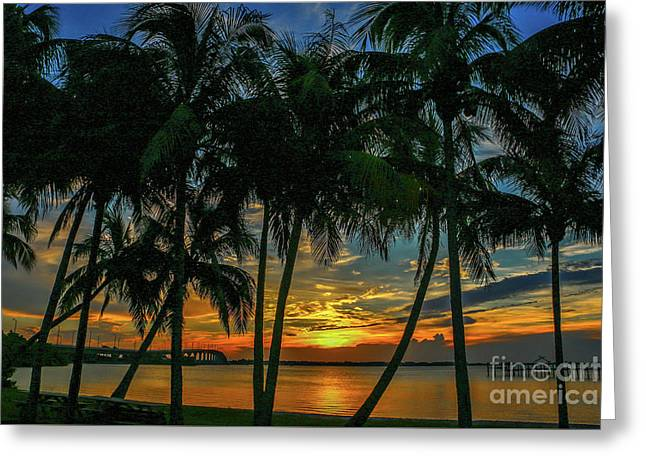 Palm Tree Lagoon Sunrise Greeting Card
