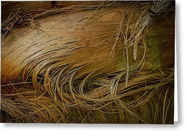 Palm Tree Straw Greeting Card