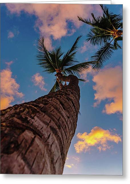 Palm Upward Greeting Card