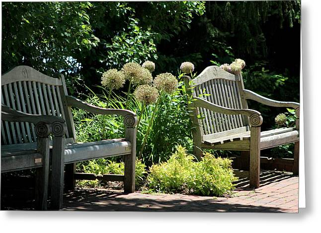 Park Benches At Chicago Botanical Gardens Greeting Card
