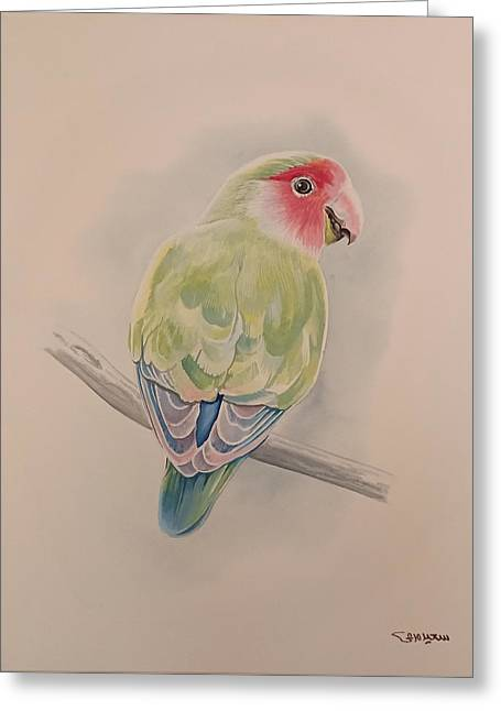 Greeting Card featuring the painting Parrot by Said Marie