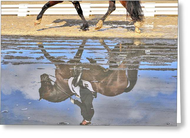 Greeting Card featuring the photograph Pas De Deux Reflected by JAMART Photography