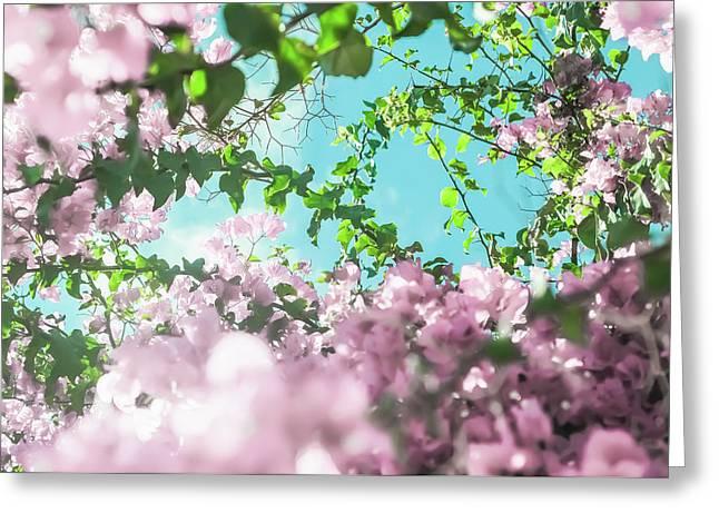 Floral Dreams II Greeting Card