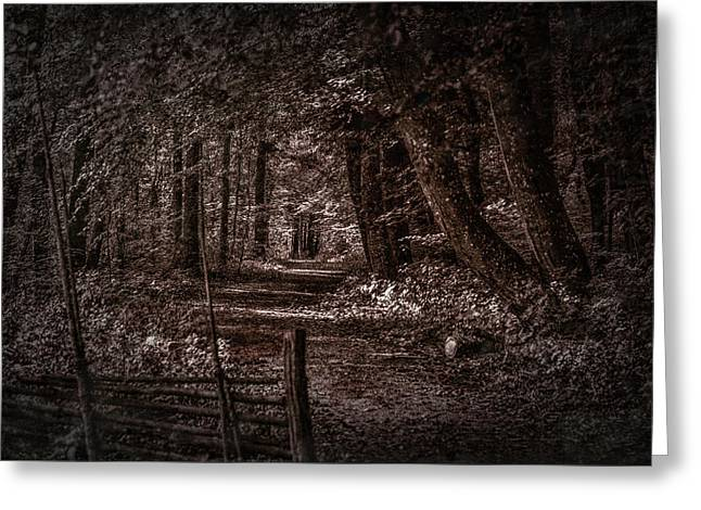 Path In Forest #i0 Greeting Card