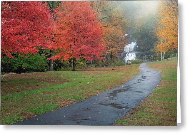 Greeting Card featuring the photograph Path To The Falls by Bill Wakeley