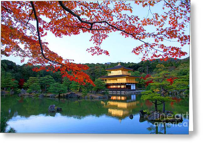 Peaceful Golden Pavilion Temple In Greeting Card