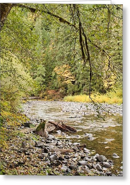 Peaceful Molalla River Greeting Card