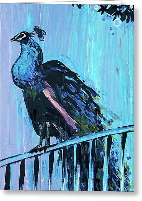 Peacock On A Fence Greeting Card