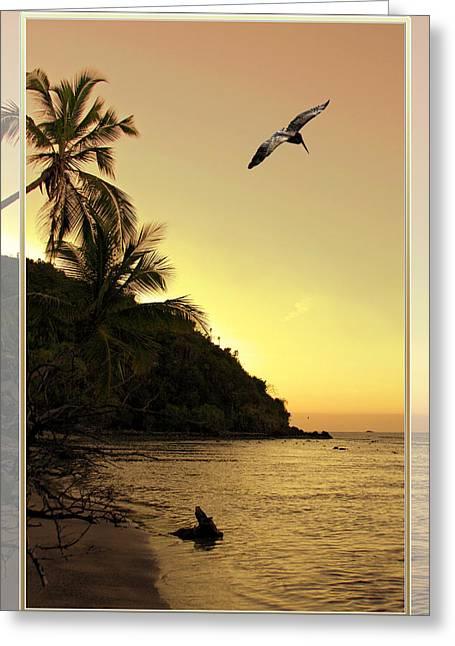 Pelican Sundown Greeting Card