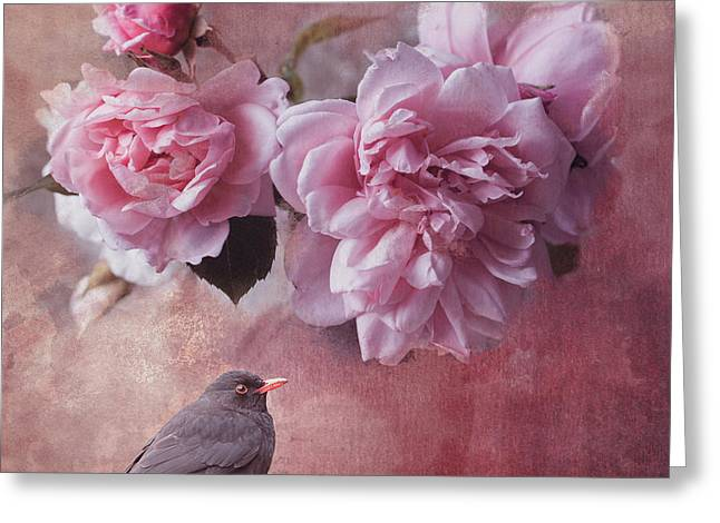 Peonies And Blackbird Greeting Card