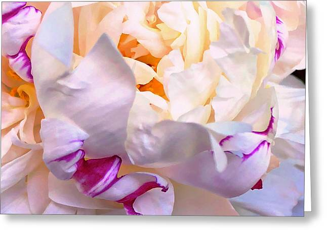 Greeting Card featuring the digital art Peony Love 1 by Cindy Greenstein
