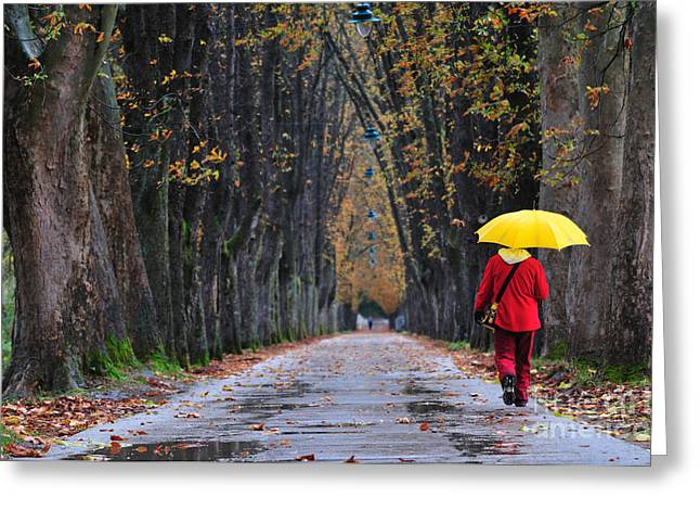 People Walking In Long Alley At Fall Greeting Card