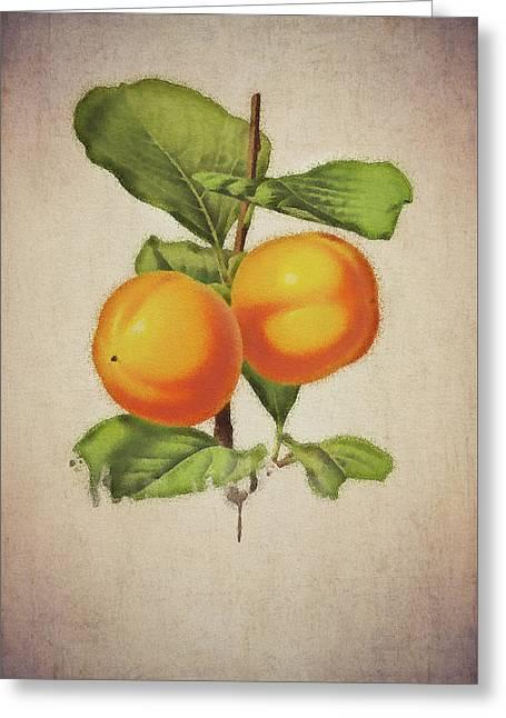 Greeting Card featuring the digital art Persimmon by Jan Keteleer