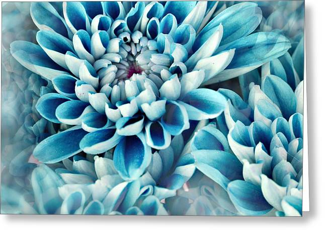 Photo Illustration Of Abstract Flower Greeting Card