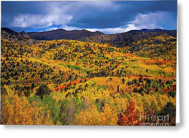 Pikes Peak Autumn Greeting Card