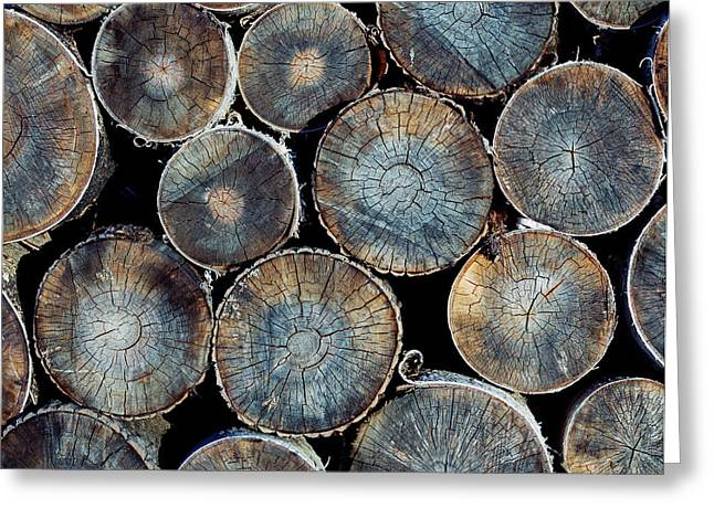 Pile Of Wood Logs Ready For Winter Greeting Card